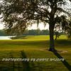 Viera Golf Course  32