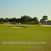 Viera Golf Course  17