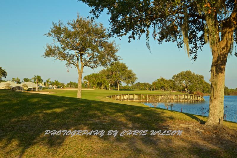 Viera Golf Course  29