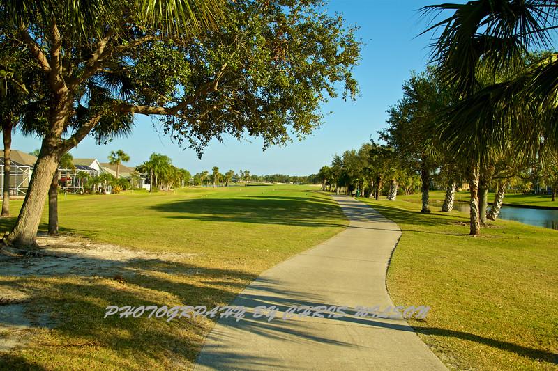 Viera Golf Course  19