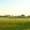 Viera Golf Course  39