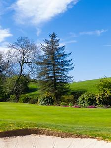 14th green, Balmore Golf Club