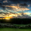 Bandon Trails Sunrise
