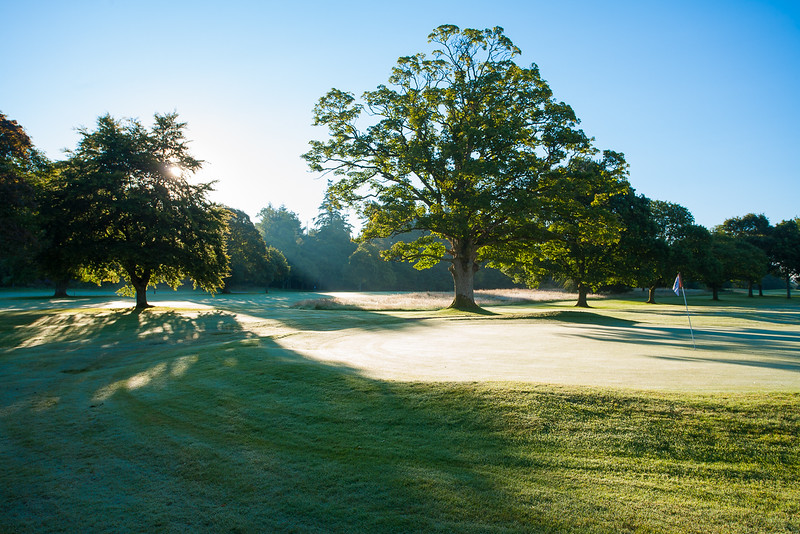 Dawn light at Buchanan Castle Golf Club