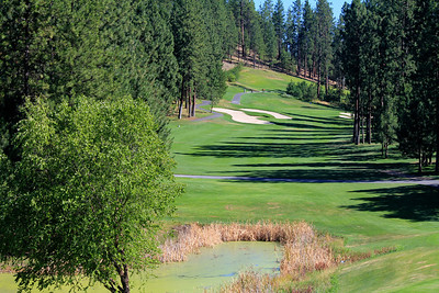 #12 Fairway, The Creek at Qualchan GC,  Spokane, Wa