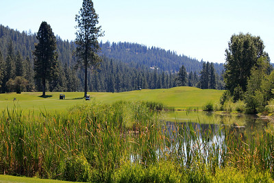 #3 Fairway, The Creek at Qualchan GC,  Spokane, Wa