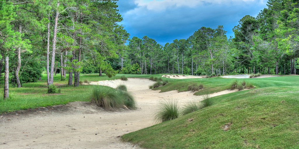 The 17th Hole at the Pine Barrens Course at World Woods