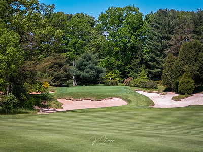 Pine Valley GC #8