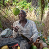Local Kittitian man slicing coconuts for juice near Royal St. Kitts Golf Club