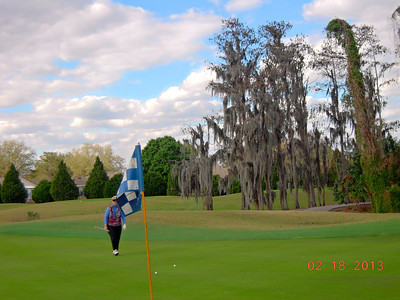 Stonegate Golf Course Louise Miller Cypress Trees