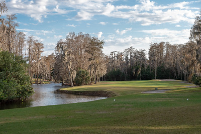 Palm Habour, Florida - January 19 -  FL Golf Day 1 at Innisbrook Golf Resort - Island Course (Photo par:  Gary Yee)