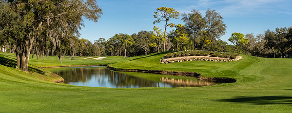 Palm Harbor, Florida - Innisbrook Resort - Copperhead Course (Photo par:  Gary Yee)