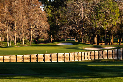 Palm Harbor, Florida - January 21 -  FL Golf Trip Day 5 at Innisbrook Resort - Copperhead Course (Photo par:  Gary Yee)
