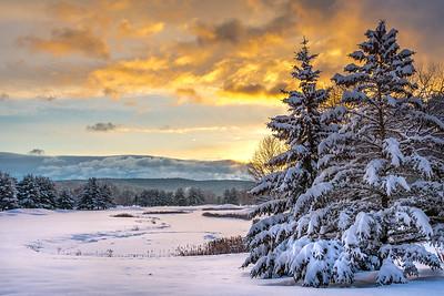 Snowy Morning at Sunrise