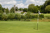 Adare Golf Course_DonnaLovelyPhotos com 2497--2