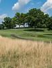 TCC summer, golf, long grasses_8-18©DonnaLovelyPhotos com-08941