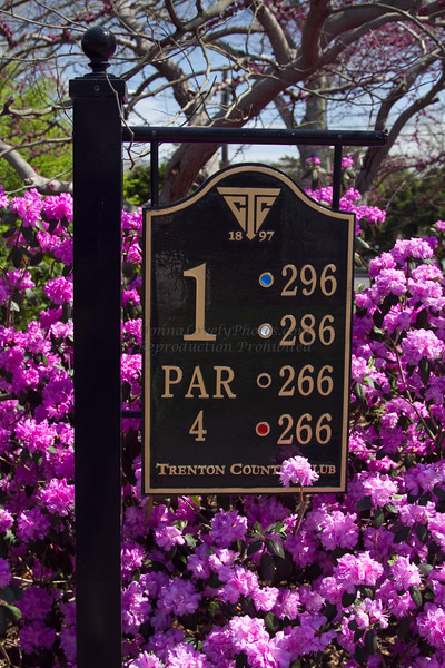 Trenton Country Club spring-8164