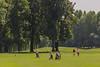Schüler, Jugend und Junioren Staatsmeisterschaften im Colony Club Gutenhof, Gutenhof, Niederösterreich, Österreich am  18. 7. 2014. Foto: Gerald Fischer
