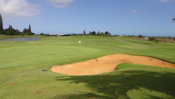5294 Round of Golf - Puakea Golf Course