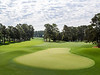 #8 Augusta National