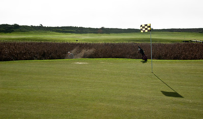 bodega-harbor-golf-7