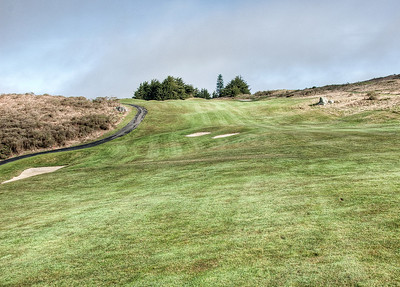 bodega-harbor-golf-4