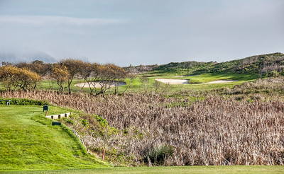 bodega-harbor-golf-7-2