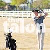 golf_distrnd1_cm_095