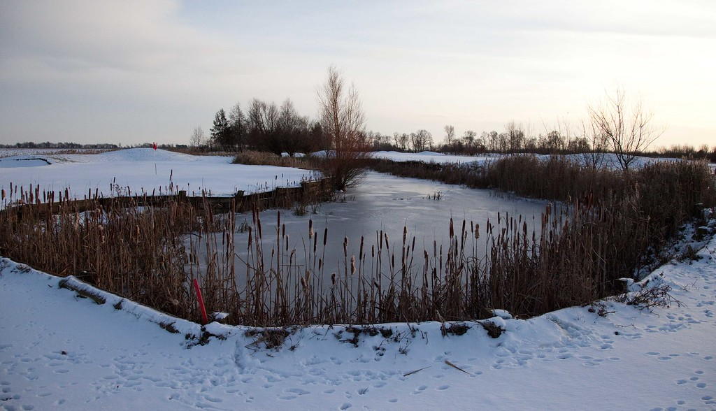 December 2010 - 12th green and lake