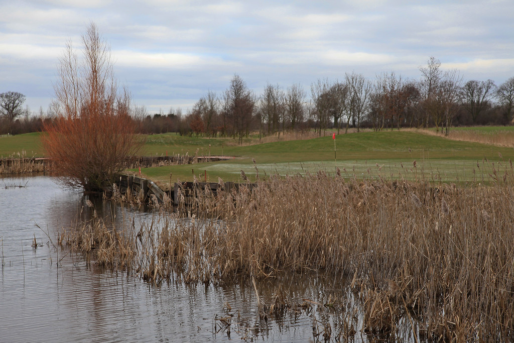12th green - not the hardest indexed hole but probably the best hole on the course - the tee is in the far distance