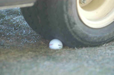Can you believe this one?  Morgan's shot wedged right under the cart's tire