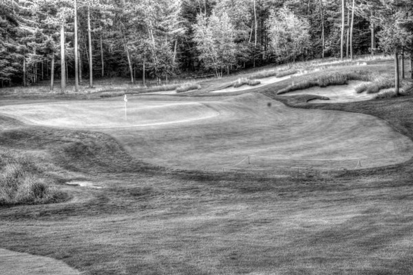Number 12 Green