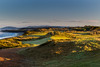 Bandon Dunes Sunrise