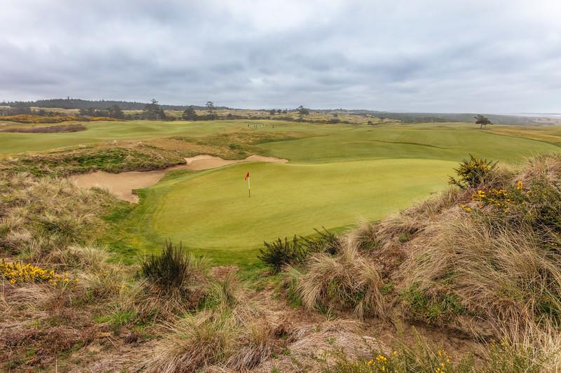Bandon Dunes Golf Course, Hole #14, Par 4