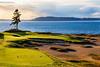 Chambers Bay Golf Course, Hole #15 (Lone Fir)