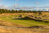 Chambers Bay Golf Course, Hole #13 (Eagle Eye)