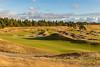 Chambers Bay Golf Course, Hole #13 (Eagle Eye)