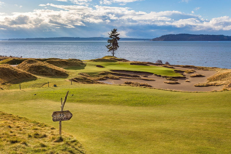 Chambers Bay Golf Course, Hole #15 (Lone Fir)