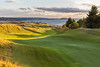 Chambers Bay Golf Course, Hole #12 (The Narrows)