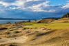 Chambers Bay Golf Course, Hole #14