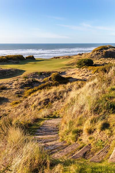 Pacific Dunes, Hole #10, Par 3