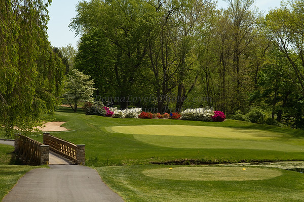 Trenton COuntry Club Golf Course #5 spring time