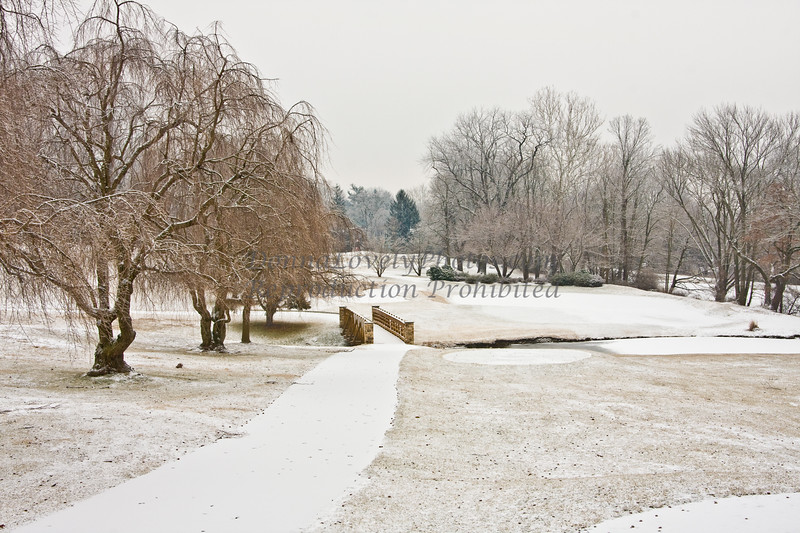 TCC winter by Donna Lovely Photos com-7175