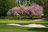 Trenton Country Club Golf Course spring time-8349