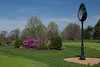 Trenton Country Club spring-8169