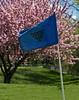 TCC #14 flag 11x14©DonnaLovelyPhotos com -2