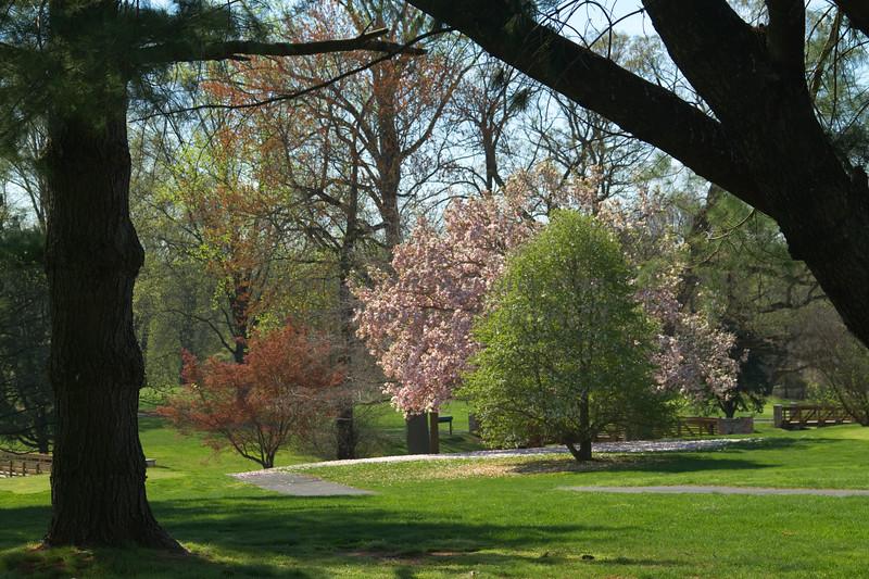 Trenton Country Club spring-8141