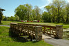 Trenton Country Club Golf Course spring time-4