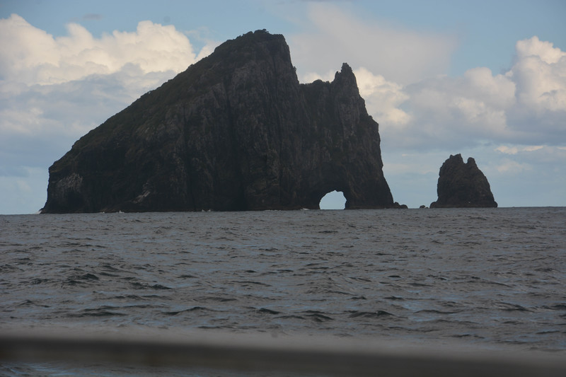 Moving from the Bay of Islands to Whangarei