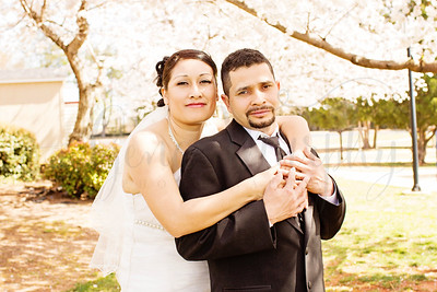 Gonzalez Wedding 2013